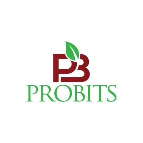 PROBITSロゴ